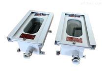 广州管廊红外对射防爆罩壳光栅探测器