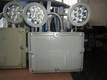 壁装防爆LED应急照明灯(A型)