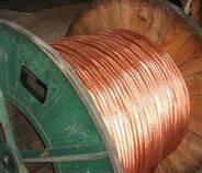 廠家直供銅包鋼圓線高層建築專用使用壽命長