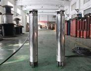 腐蝕性液體中使用的潛水電動機_316L材質