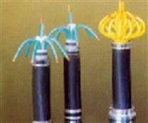 双层钢丝铠装电缆HYA53 HYAT53