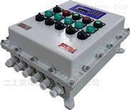 二工回路可自由选择的组合式防爆仪表箱