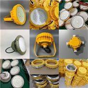 LED免维护防爆灯40W 24v煤仓用防爆防腐灯