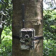 4G物聯網云存儲GPS無線紅外夜視自動監測儀