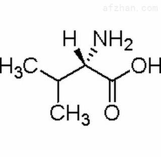 L-2-氨基异戊酸
