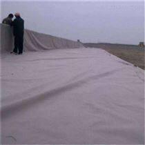 国标聚酯长丝无纺土工布经销商