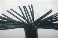 HYAT5310*2*0.5充油通信电缆
