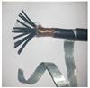 控制电缆ZR-KVVP2-22-4×6价格