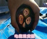 YCW橡套软电缆 天津银顺牌
