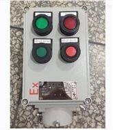 LBZ-B2D2G防爆操作柱