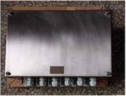 BXJ51-20/30防爆接线箱