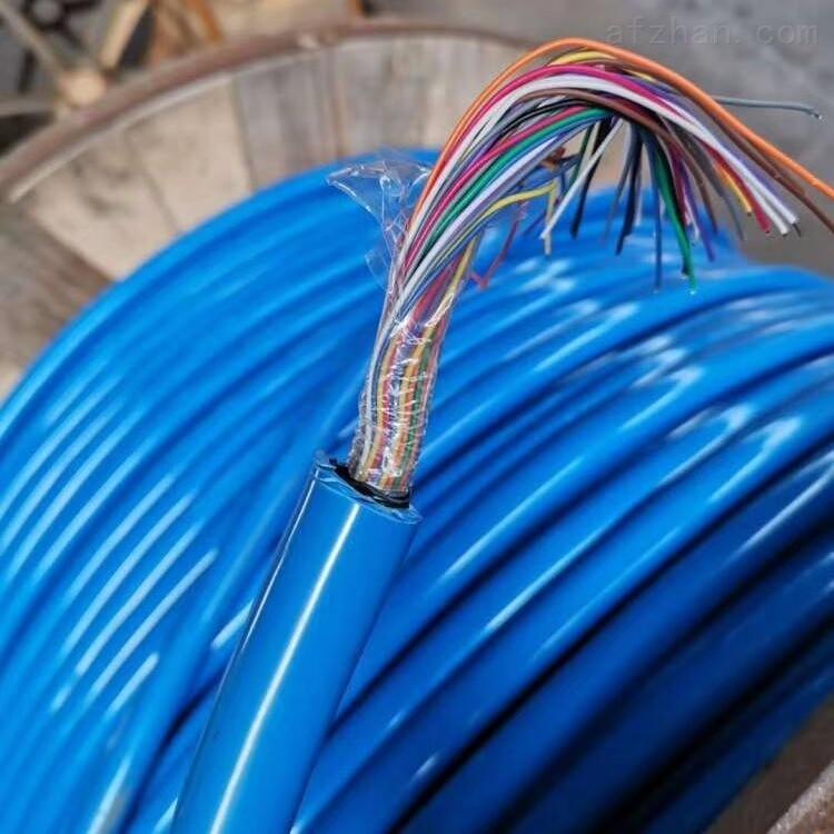 2x0.75mm RS485信号电缆-工艺先进