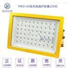 YMD-A2-200W支架式免维护防爆LED灯180W160W