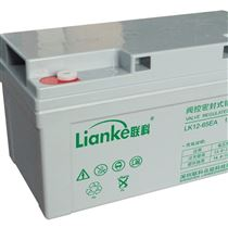 山东科普代理联科电池 LK12-100EA