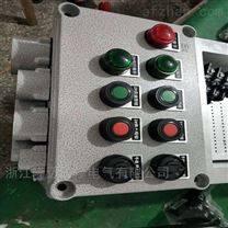 BEC56-A2D2B1G防爆操作柱