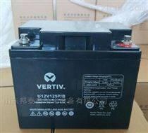 艾默生蓄電池12V38AH UPS專用