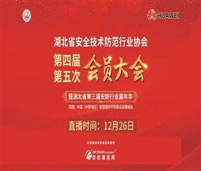 湖北省第三届安防行业嘉年华-湖北省安防协会第四届第五次会员大会下