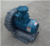 EX-G-7.5高端防爆漩涡气泵 5.5KW
